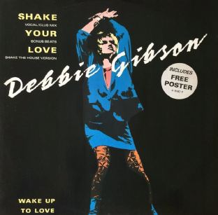 "Debbie Gibson - Shake Your Love (12"") (VG+/VG)"